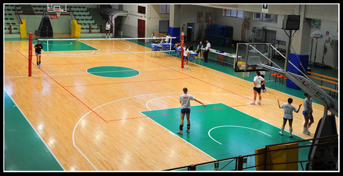 volley indoor